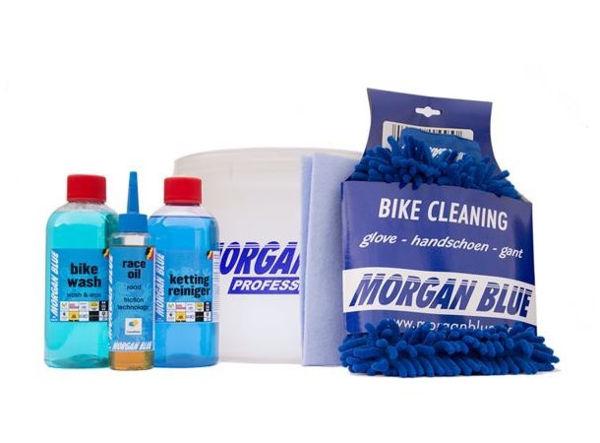 Morgan Blue Maintenance Lit Light